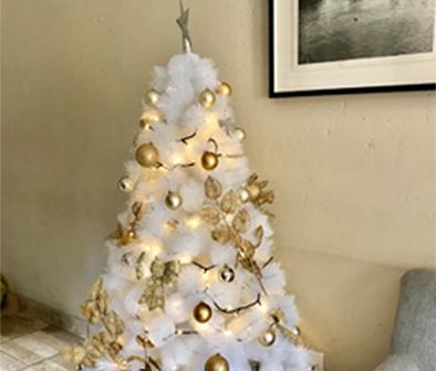 Christmas Installations